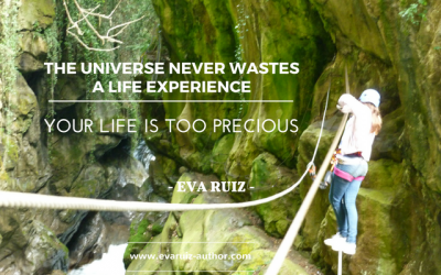 The Universe never wastes a life experience